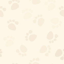 Paw Prints Pattern