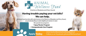 Animal Wellness Fund Promotion
