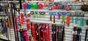 Dog Leashes, toys and accessories